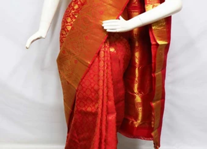 Wet/Dry Clean-Saree Lady