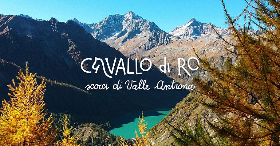 CAVALLO-DI-RO.jpg