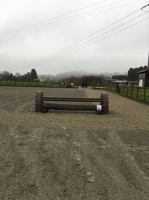 Arena Eventing  30 January