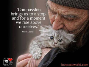 Compassion, are you really connecting ?