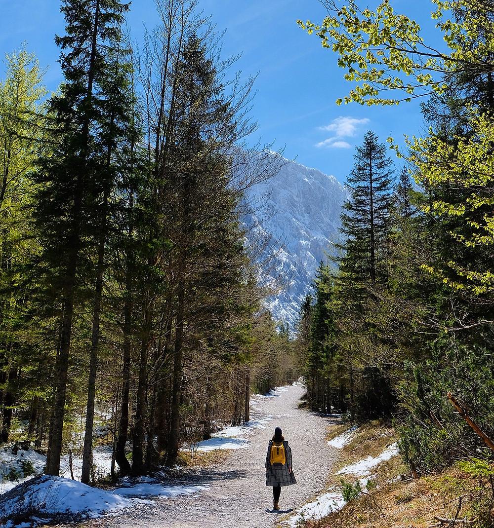 Tamar Valley, Slovenia