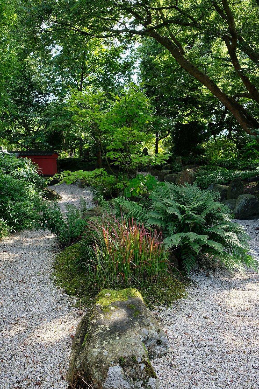 'Japanese von Siebold garden' at Hortus Botanicus in Leiden