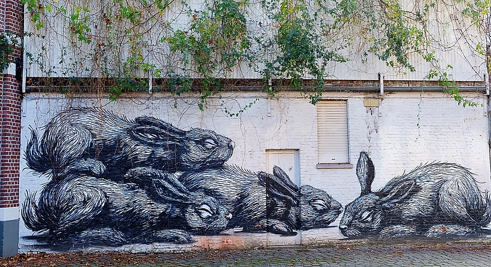 Street Art by ROA in Ghent