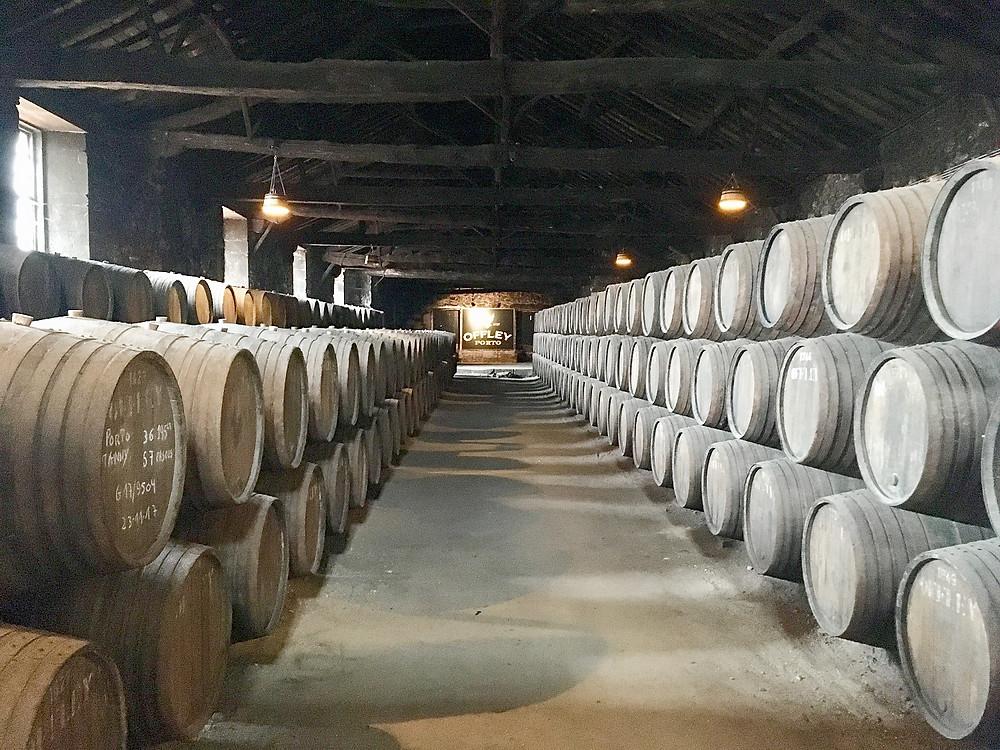 Offley Cellars in Porto