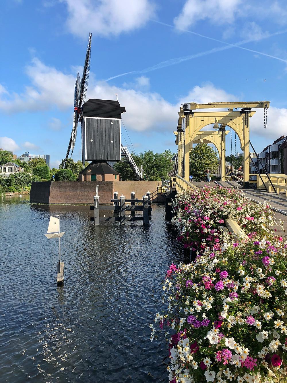 Molen De Put in Leiden