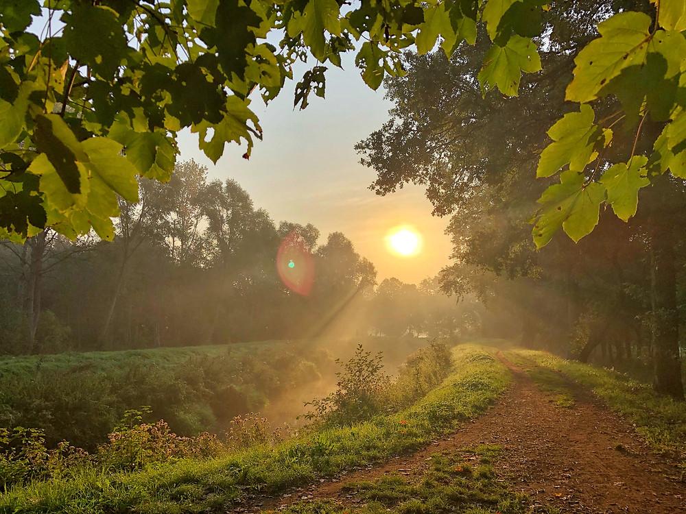 Sunrise at Grote Nete Belgium