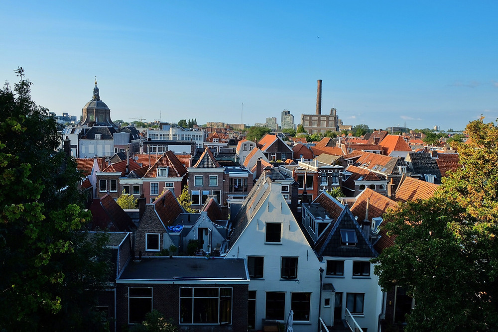 View from Leiden Castle