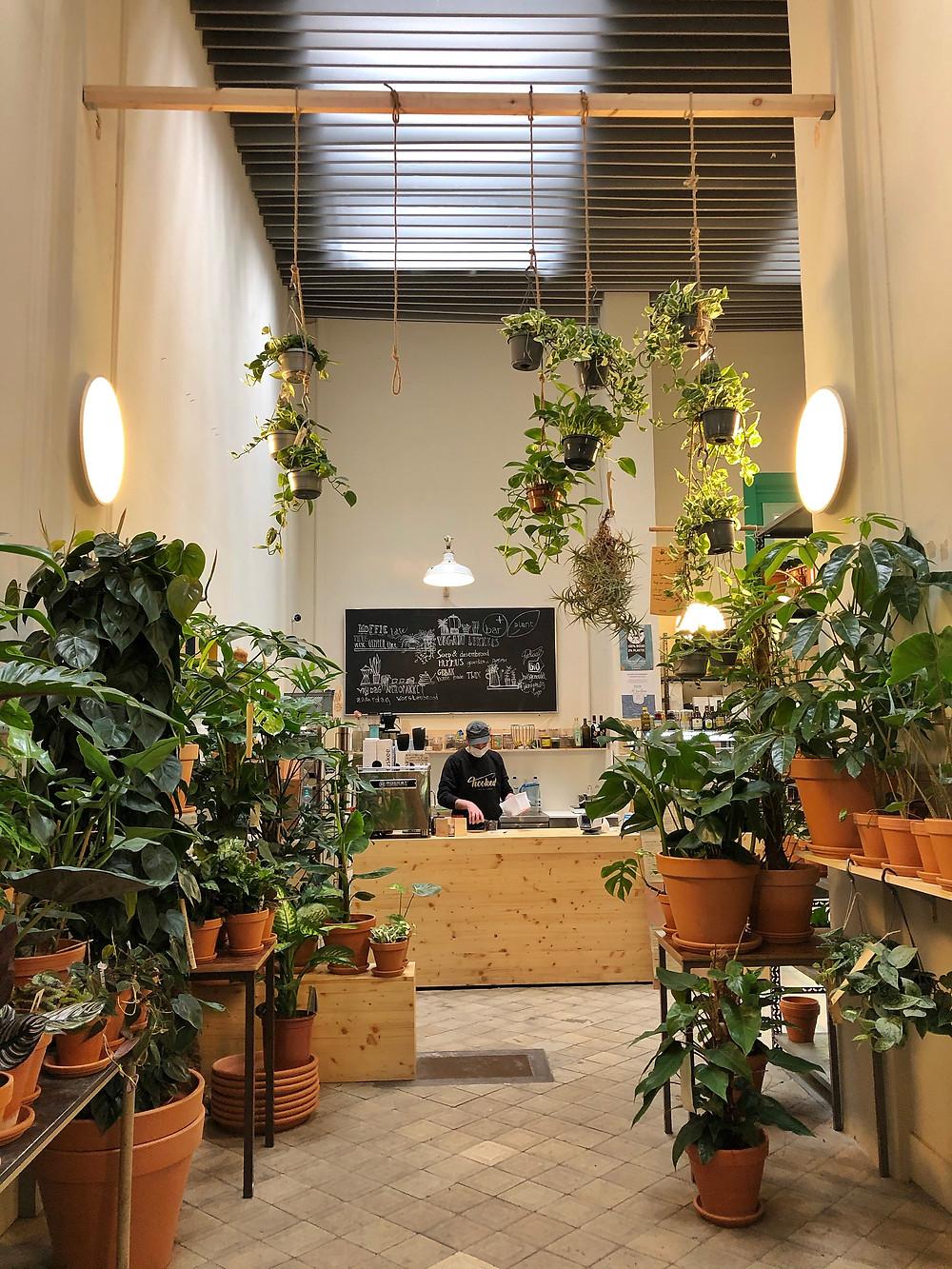 Bar Plus Plant Antwerp Borgerhout