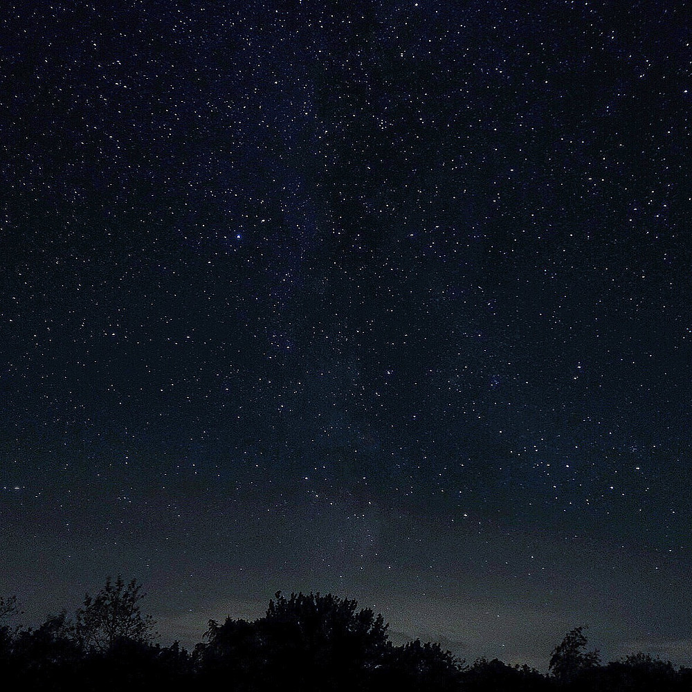Stars at Lauwersmeer Friesland
