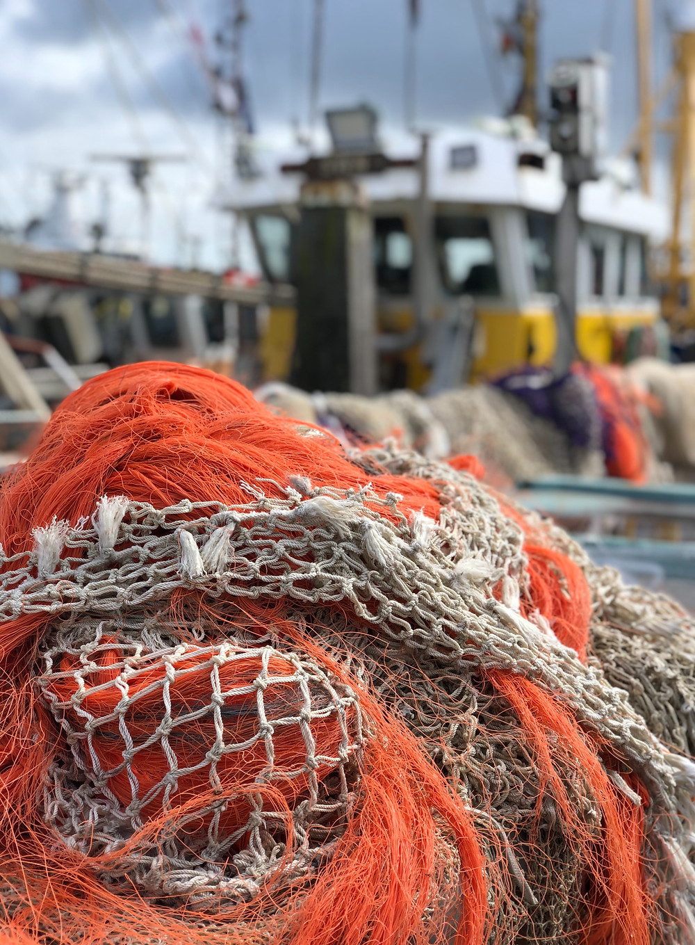 Fishing nets at the harbour of Terschelling