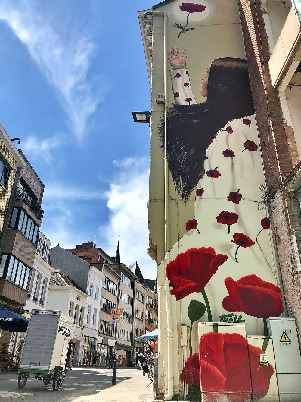 Street Art by TUCH in Mechelen