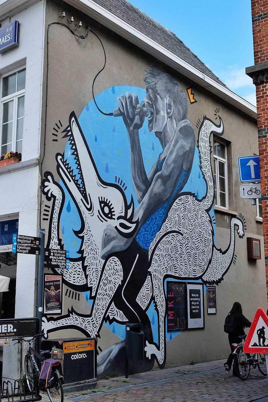 Joachim & Bart Vermeiren street art Lier