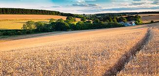 Panorama Rothwell_