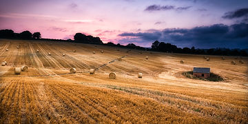 Harvest sunset Brinkhill