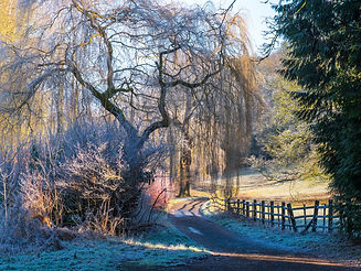 Rothwell hoare frost morning