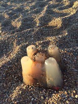 Agar jelly sandcastle cast