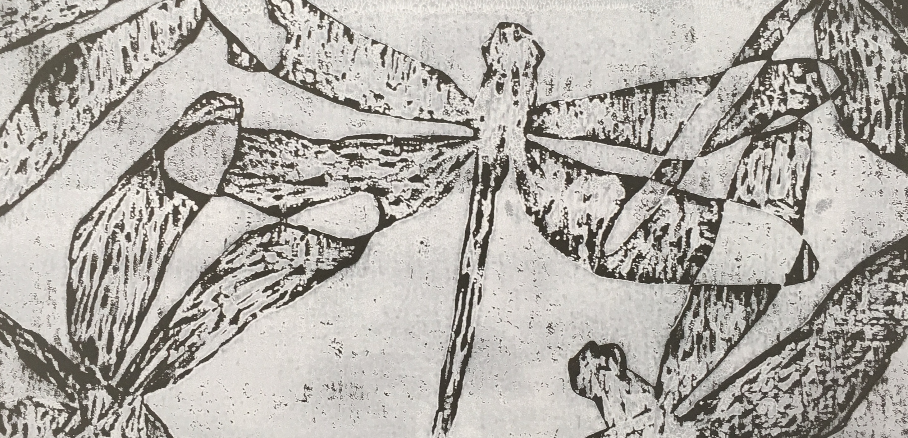 Dragonfly in Grey