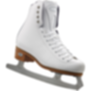 skates riedell 223 stride.png