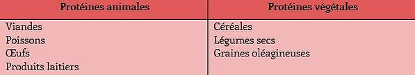 tableau_sources_protéines.jpg