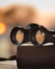 black binoculars.jpg
