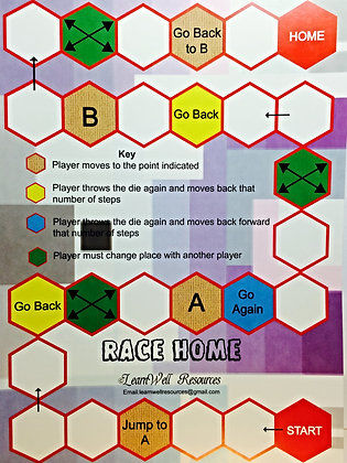 Race Home Board Game