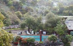 Buckeye Tree Lodge Pool