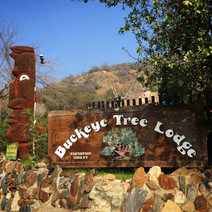 Buckeye Tree Lode sign and totem
