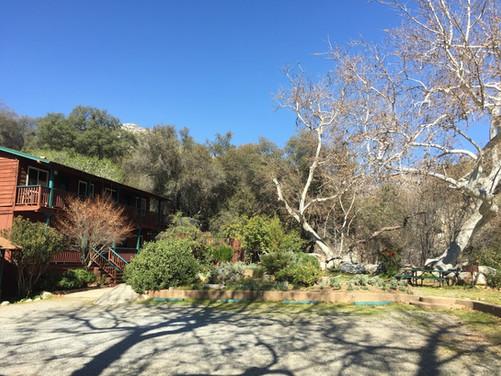 Buckeye Tree Lodge buildign 2 and garden