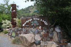 Buckeye Tree Lodge Sign and Totem