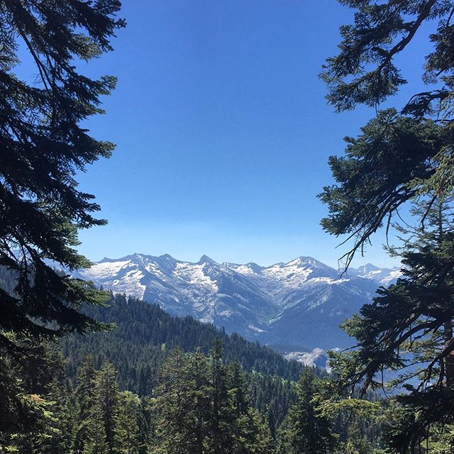 Hiking up Alta Peak in Sequoia NP! _yell