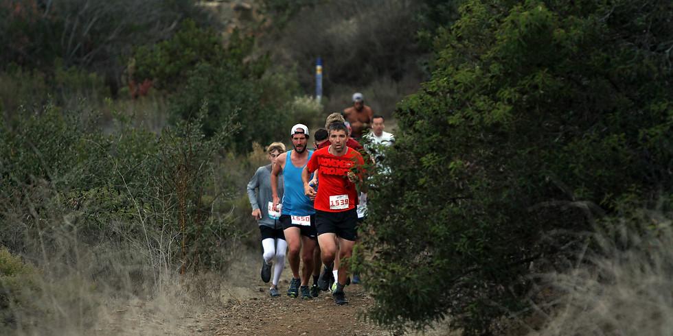 Black Mtn Turkey Burner Half, 10K, 5K