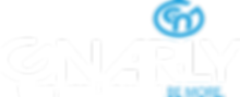 NEW Gnarly Nutrition Race Logo v2 OL (2)