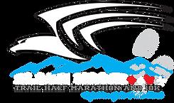 black hawk logo WHITE.png