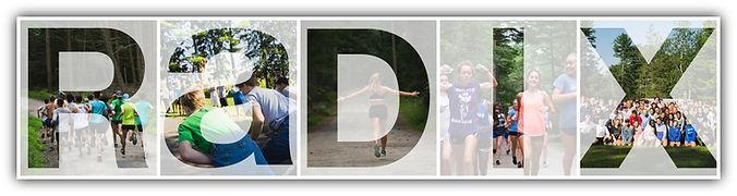 collage-RADIX (1).jpg
