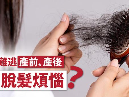 孕婦難逃產前、產後「脫髮煩惱」?