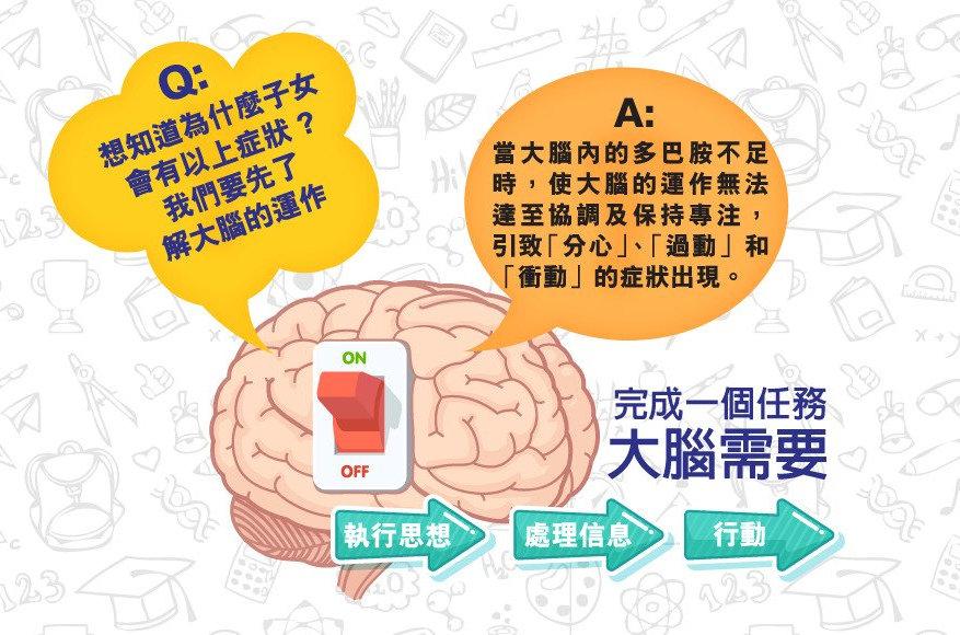專注力,ADHD,專注力不足,腦專加,Brain FocuSmart,腦專加BrainFocuSmart,BFS,香港醫護,提升專注力,兒童健康,成績,進步,做功課,過度活躍症,發脾氣,教育,親子,港童,港孩,仔女,家長,學習,腦部發展,情緒,專注,注意力不足過動症,注意力缺失症,發展性障礙,兒童,多動症,真人實證,多巴胺,日本製造,大腦,衝動,Kids,ballyhoo.com.hk,ballyhoo