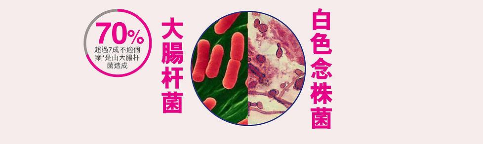 Uticare紓密丹念珠菌,大腸杆菌