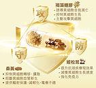 FDN_Homepage-14.jpg