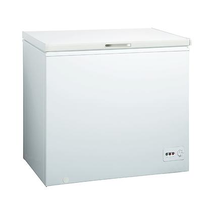 Chest Freezer Electronic Control 295L