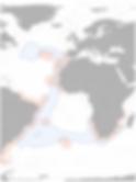 COSH_OutboundMigration_V1.2-750x1000.png