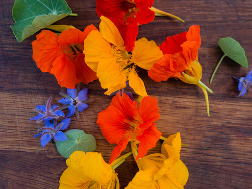 Santa Barbara Blooms & Edible Flowers  for Entertaining
