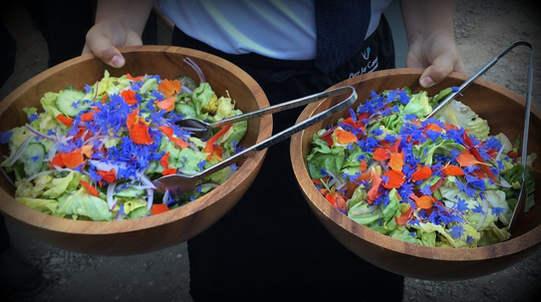 Local Farmer's Market Salad