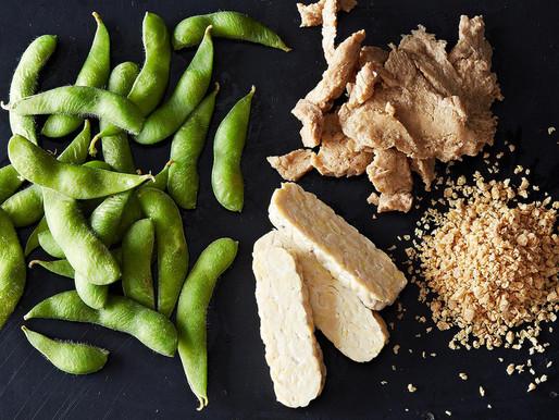 Alternative Proteins