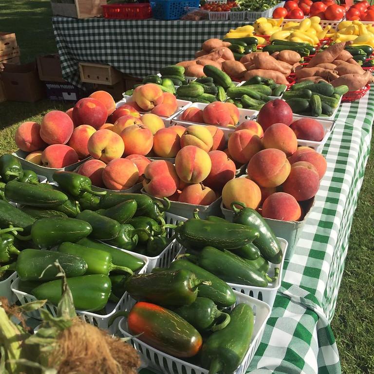 30A Farmers' Market (2)