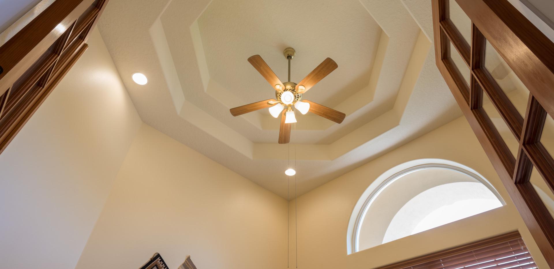 Dramatic Den Ceiling