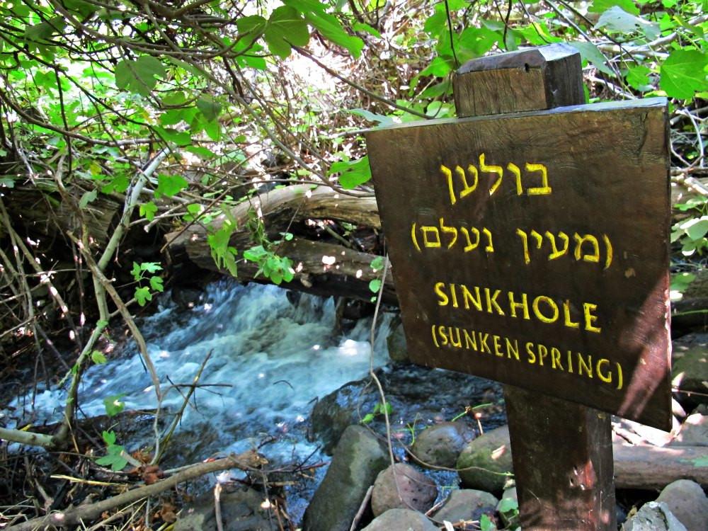 Tel Dan's Sunken spring