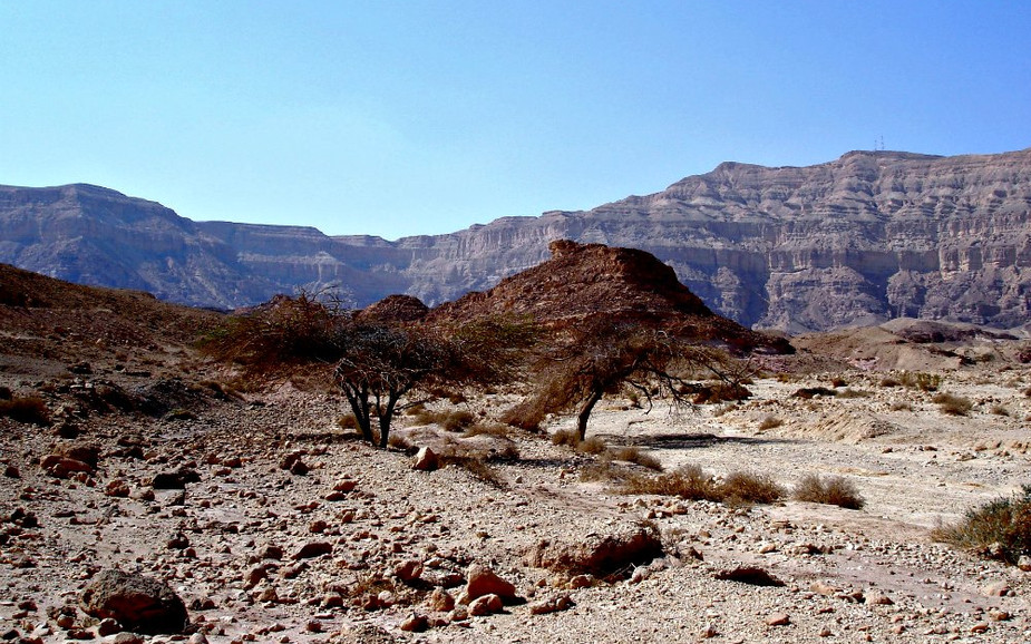 Timna Park View