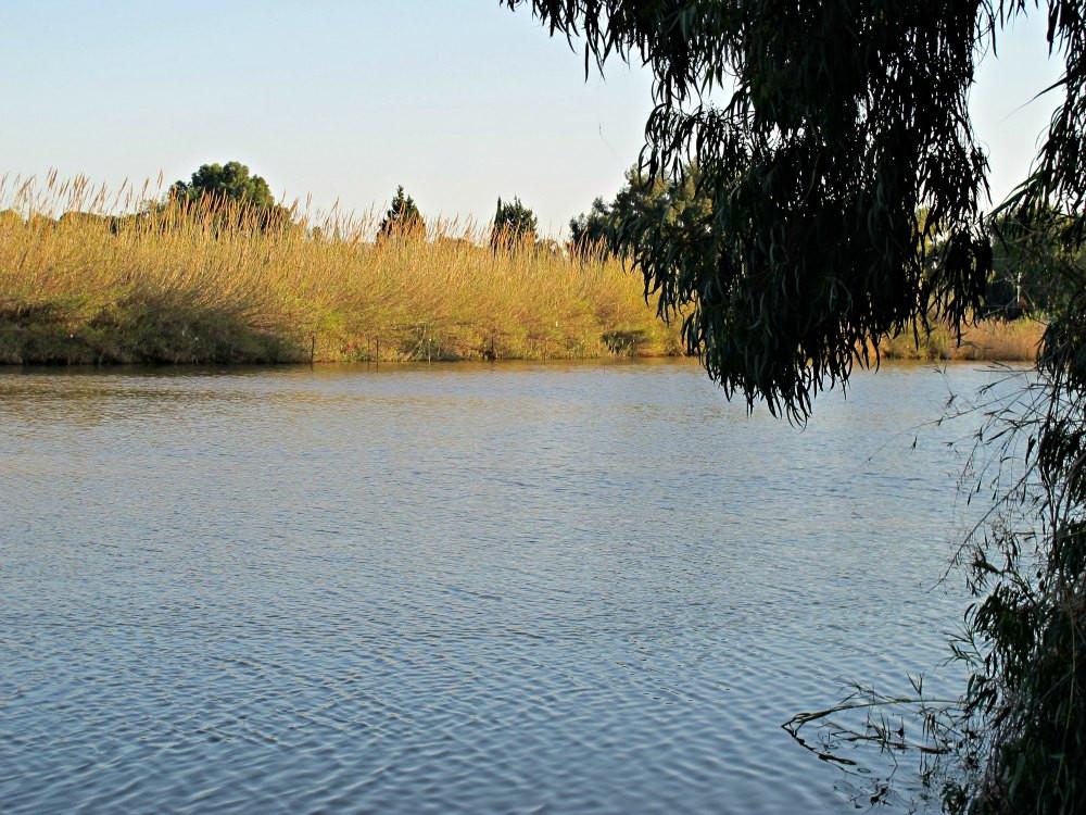 Nahal Poleg - Lake