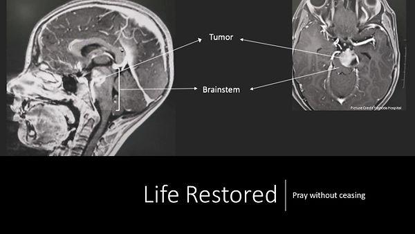 Life Restored.jpg