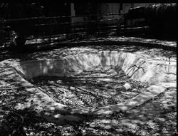 Bathing Grounds